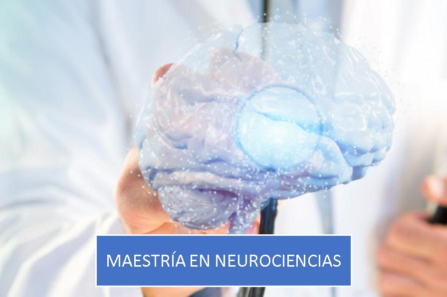 Maestría en Neurociencias